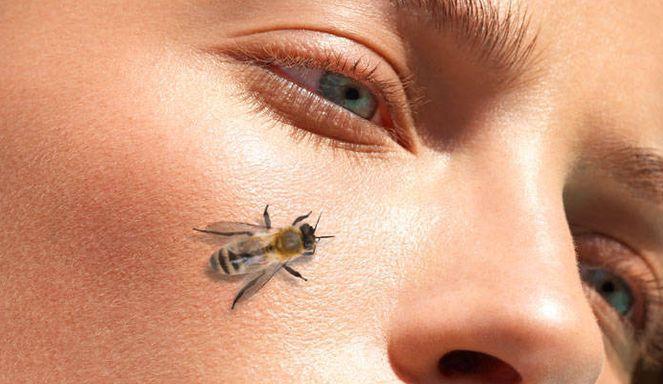 δηλητήριο της μέλισσας είναι το νέο botox