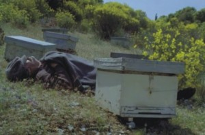 Μελισσοκόμος