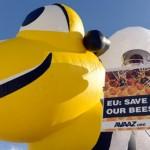 Νίκη των μελισσών: προσωρινός περιορισμός τριών νεονικοτινοειδών