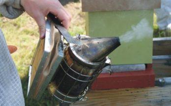 εκπαιδευτικά προγράμματα μελισσοκόμων